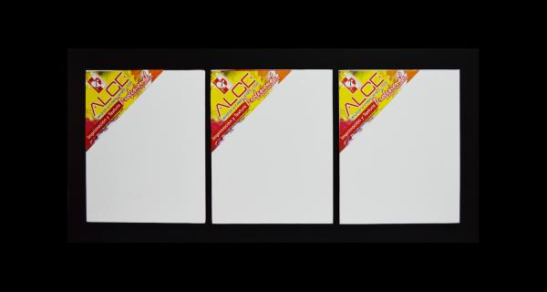 Cartón Lienzo Triptico Enmarcado